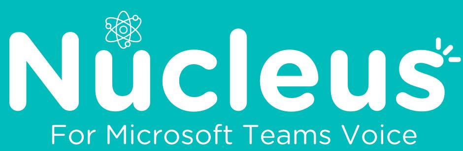 Nucleus for Teams 1